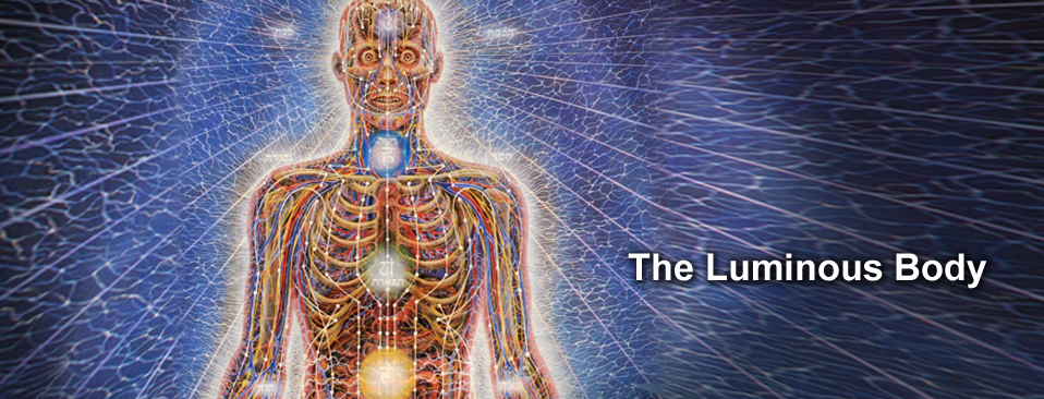 The Luminous Energy Field